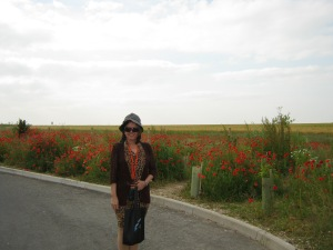 Oh, poppies in the field!